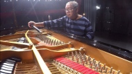 Ottawa's Piano Man