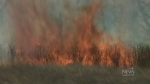 Fire crews battle to contain grass fire