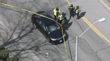 Scarborough pedestrian struck