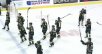Impact of abrupt end to London Knights OHL season