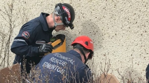 Edmonton Fire Rescue Services is working to rescue two cats stuck in an east Edmonton sinkhole.