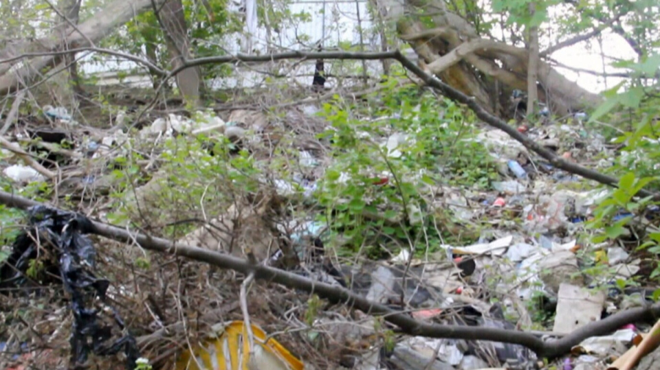 Piles of garbage are seen in Toronto's Don Valley. A team of volunteers plans to clean up the litter next week.