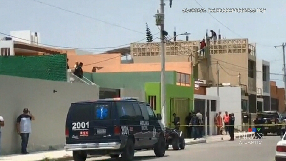 Maritime man stabbed to death in Mexico: reports