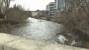 Water safety a concern after Speed River incident