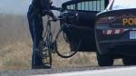 cyclist, Schomberg