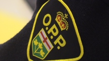 An OPP badge is seen in this file photo