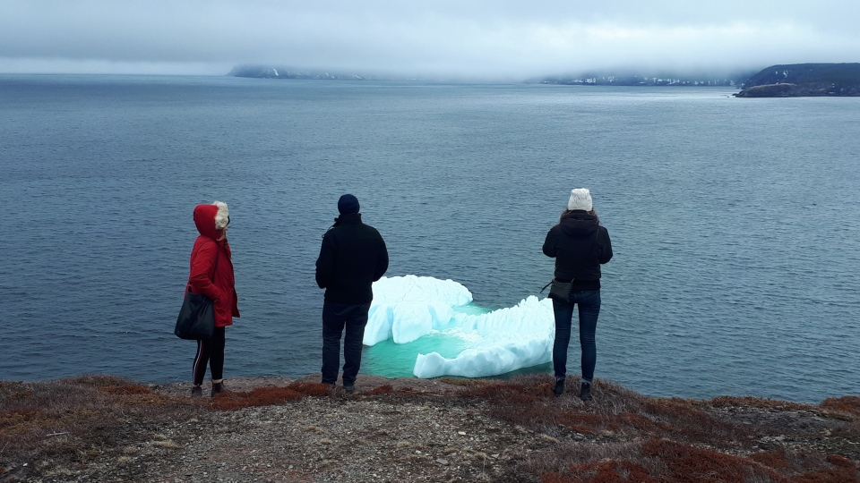 People check out an iceberg from Signal Hill in St.John's, N.L., Sunday, April 21, 2019. (THE CANADIAN PRESS / Holly McKenzie-Sutter)