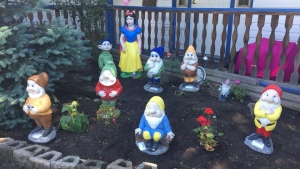 The dwarf statues stolen from Cindy and Bjorn Storness-Bliss' garden are seen in this provided image.