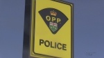 Another town debates ditching OPP