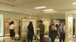Students take 'science fair' to another level