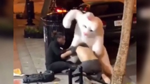 Caught on cam: Man in bunny suit breaks up brawl