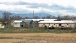 Pincher Creek Hutterite Colony - boy shot