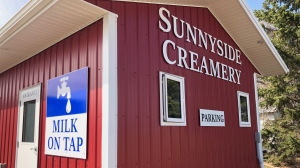 Sunnyside Dairy north of Saskatoon is serving up fresh, full fat milk. Francois Biber/CTV News