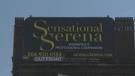 """Sensational Serena"" is a licensed escort agency in the city of Winnipeg. (File image)"