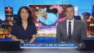 NEWSCAST APRIL 24, 2019