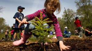Four-year-old Norah Basha plants a tree at Everett Crowley Park as part of Earth Day celebrations in Vancouver, B.C., on Saturday, April 21, 2012.  (THE CANADIAN PRESS/Darryl Dyck)