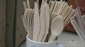 Banning plastics in Montreal