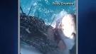 Great white shark munches on bait bag