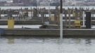 Sarnia marina docks damaged after copper wire stolen.