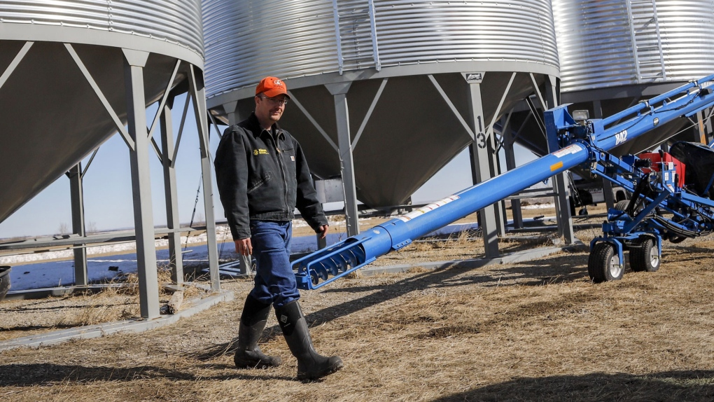 Conservatives urge Liberals to expedite promised relief for canola farmers