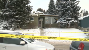 In January 2013, Brett Wiese, a University of Calgary student, was stabbed multiple times during a house party in the 5100 block of Brisebois Drive Northwest