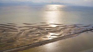 Images captured by CTV News Vancouver&#39;s Gary Barndt in Chopper 9 show low tide on the Fraser River, as well as other parts of Metro Vancouver.  <br><br>