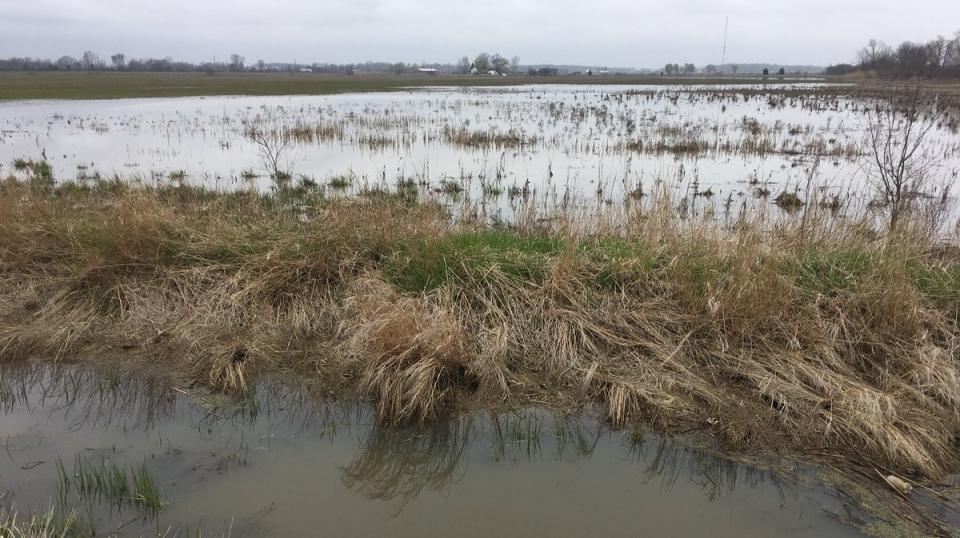 Leamington Flooded Land 2019