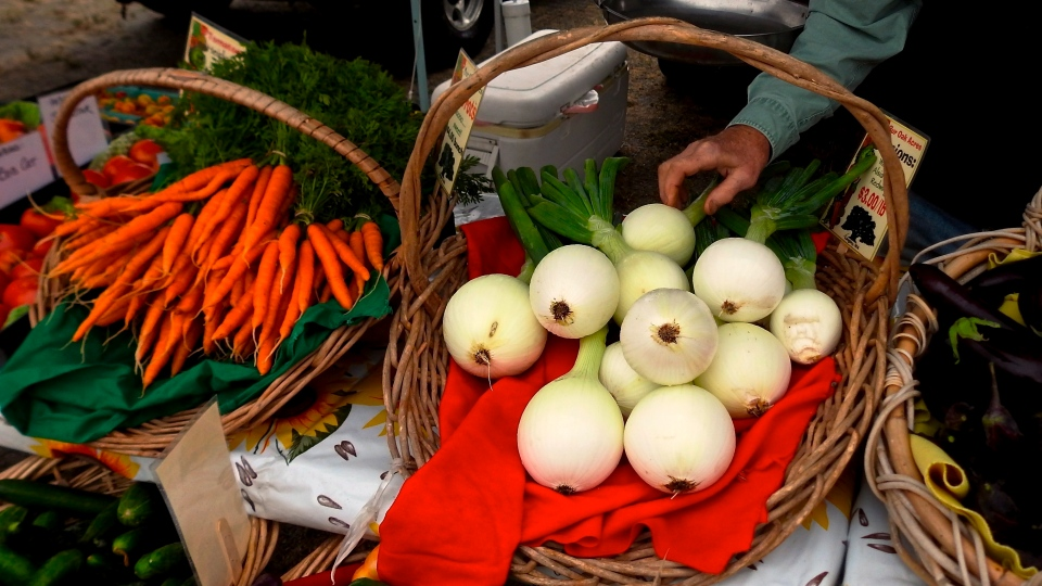 This Aug. 24, 2018 photo taken at the Bayview Farmers Market near Langley, Wash., shows fresh produce being laid out for purchase. Many farmers markets across the nation have banned dogs from their craft, food and produce displays, citing breakage, safety and sanitary concerns. (AP Photo/By Dean Fosdick)