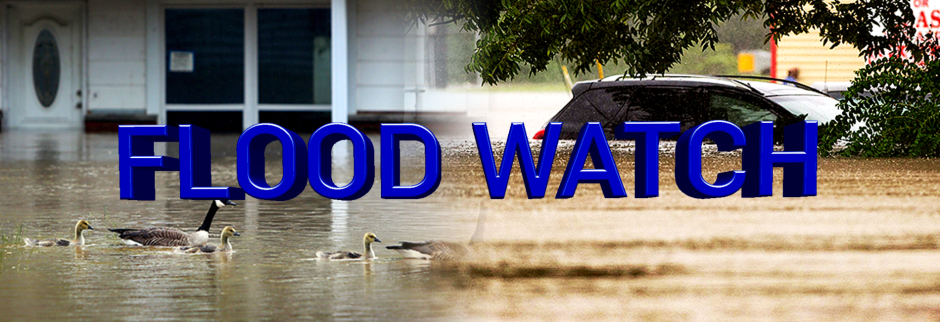 Flood Watch header