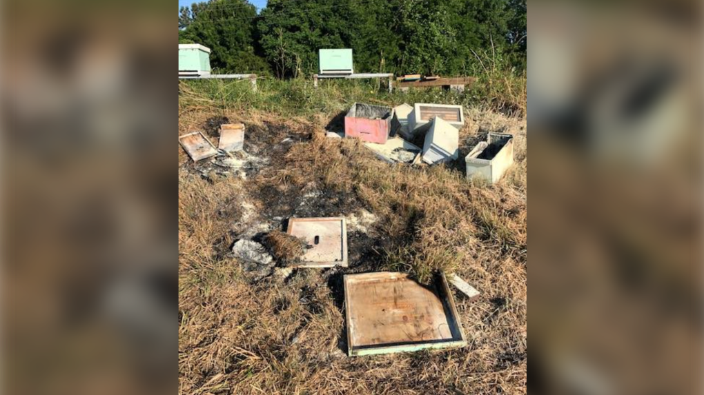 Beehives set on fire