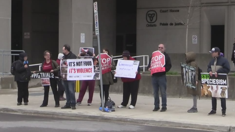 Animal rights activists rally outside the courthouse in London, Ont. on Wednesday, May 1, 2019. (Gerry Dewan / CTV London)