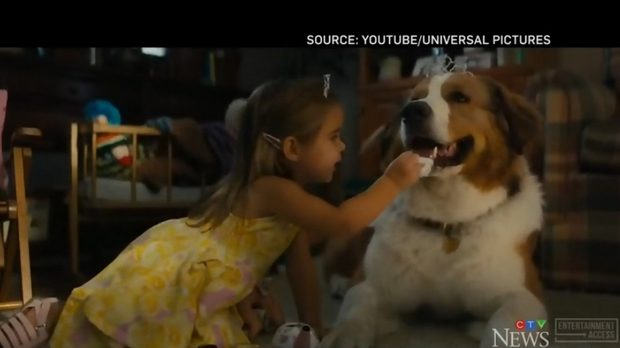 Manitoba toddler hitting the big screen in 'A Dog's Journey'