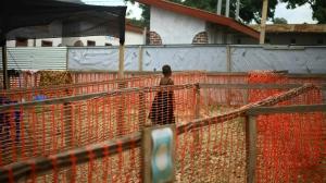 In this Tuesday April, 16, 2019 file photo, a child suspected of having the Ebola virus at a treatment centre in Beni, Eastern Congo.(AP Photo/Al-hadji Kudra Maliro, File)