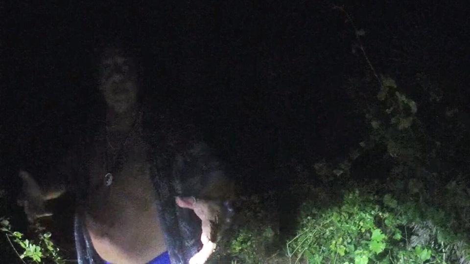 Florida man arrest pot plant