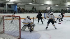 The Northeast Saints hockey association would be eliminated under Hockey Calgary's new boundaries