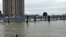 Water levels are high at Lakeview Park Marina in Windsor, Ont., on Friday, May 3, 2019. (Ricardo Veneza / CTV Windsor)