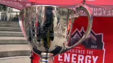 The Better Business Bureau says scammers are targeting football fans looking to score tickets for the 107th Grey Cup game. (File)