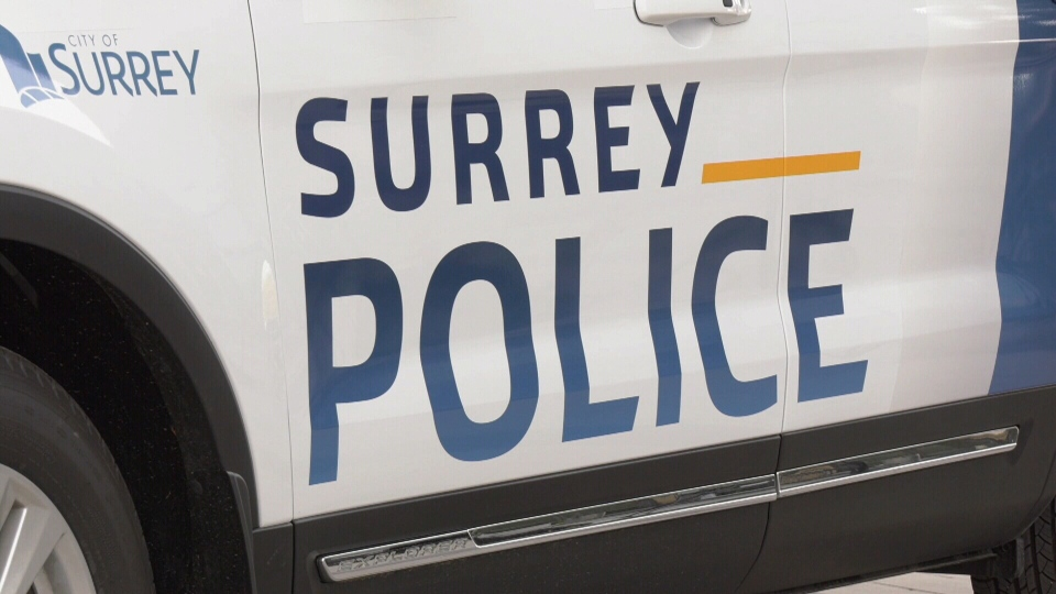 First glimpse of Surrey police force