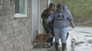 Emergency shelter for flood victims in Mattawa