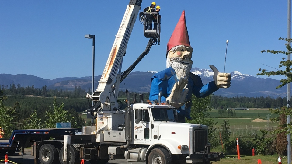Howard the gnome was dismantled in preparation for his big move to Galey Farms in Saanich Thurs., May 9, 2019. (CTV Vancouver Island)