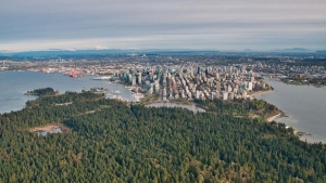 The Vancouver skyline and Stanley Park are seen from the air in spring 2019. (Pete Cline / CTV News Vancouver)