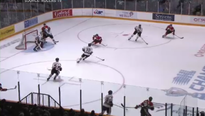 The Guelph Storm playing against the Ottawa 67's on May 10, 2019. (Courtesy: Rogers TV)