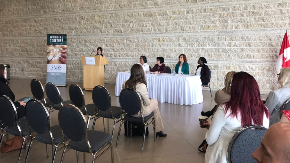 Sexual Assault Services of Saskatchewan are launching an action plan to end sexual violence in Saskatchewan. (Cally Stephanow / CTV Regina).