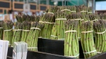 Demand for asparagus is high at Barrie Hill Farms and local farmers say that could mean prices will rise. Mon., May 13, 2019 (CTV New/Craig Momney)