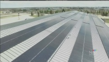 Selkirk goes solar