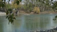 Bow River near Prince's Island Park - May 14, 2019