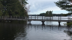 Mortimer's Marina in Port Carling on Wed., May 15, 2019 (CTV News/Sean Grech)