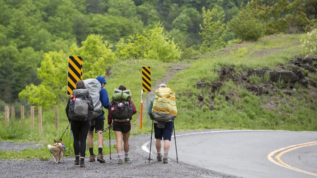 The Appalachian trail in Bastian, Virginia