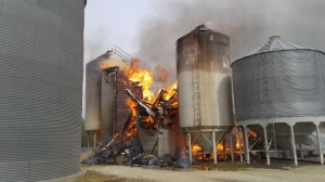 A ninety-foot-tall feed mill in Woodland Colony burned down Wednesday.