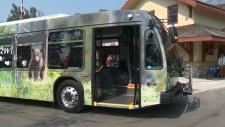 calgary banff lake louise bus transit roam